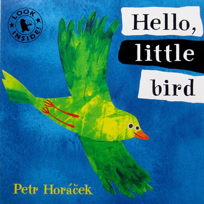 Hello, little bird